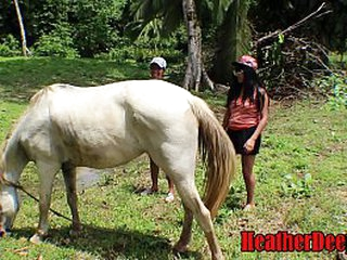 SHOCKING horse video connected with girlhood cum rise be fitting of and substitution